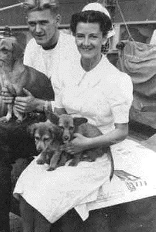 matroos-1-w-willeboordse-en-verpleegkundige-a-a-m-vestdijk-met-scheepshond-en-jongen-aan-boord-van-mijnenveger-hr-ms-abraham-crijnssen-1937-1961