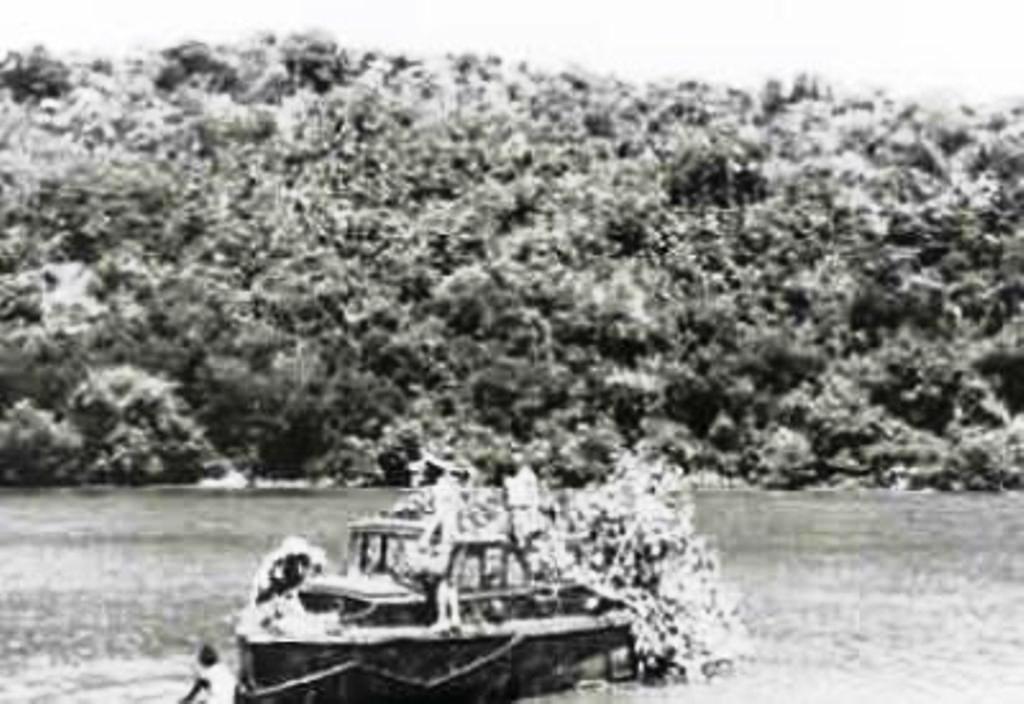 motorsloep-m-64-1937-1967-bestemd-voor-hr-ms-abraham-crijnssen-haalt-vers-groen-voor-de-camouflage-maart-1942